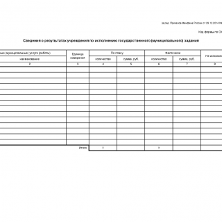 Сведения о результатах учреждения по исполнению государственного (муниципального) задания. Форма 0503762