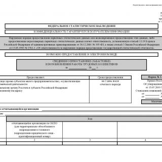 Форма 1-ПР. Сведения о приостановке (забастовке) и возобновлении работы трудовых коллективов