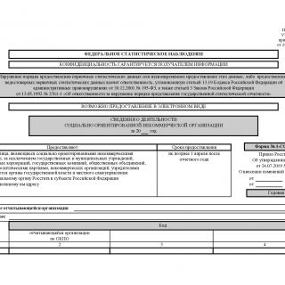 Форма 1-СОНКО. Сведения о деятельности социально ориентированной некоммерческой организации