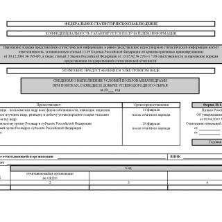 Форма 1-ЛС. Сведения о выполнении условий пользования недрами при поисках, разведке и добыче углеводородного сырья