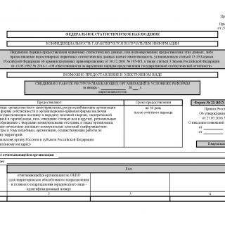 Форма 22-ЖКХ (ресурсы). Сведения о работе ресурсоснабжающих организаций в условиях реформы