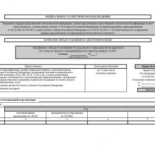 Форма 26-ЖКХ. Сведения о предоставлении гражданам социальной поддержки по оплате жилого помещения и коммунальных услуг