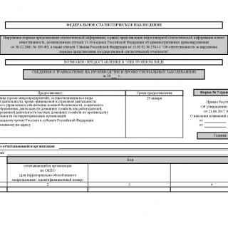 Форма 7-травматизм. Сведения о травматизме на производстве и профессиональных заболеваниях