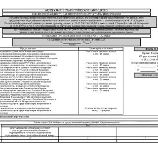 Форма 5. Сведения о профилактических прививках