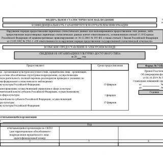 Форма 7-НК. Сведения об организации культурно-досугового типа