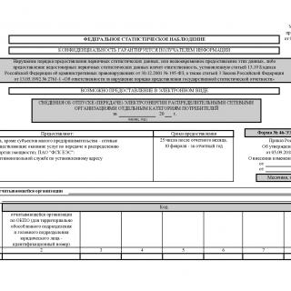 Форма 46-ЭЭ (передача). Сведения об отпуске (передаче) электроэнергии распределительными сетевыми организациями отдельным категориям потребителей
