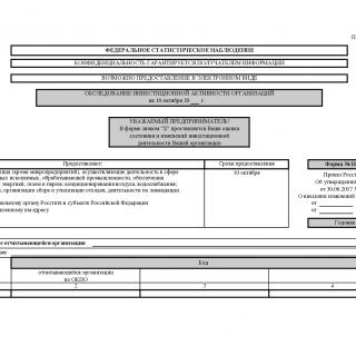 Форма ИАП. Обследование инвестиционной активности организаций