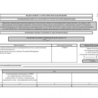 Форма П-2 (инвест). Сведения об инвестиционной деятельности