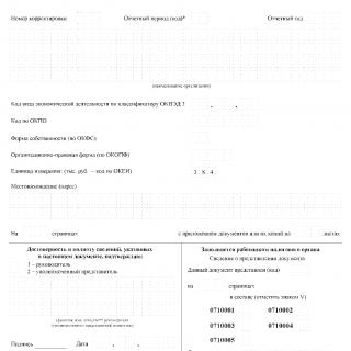 Упрощенная бухгалтерская отчетность. КНД 0710096