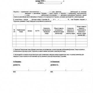 Бланк расширенного акта приема-передачи товара