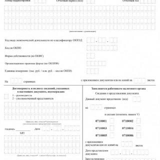 Бухгалтерская (финансовая) отчетность КНД 0710099