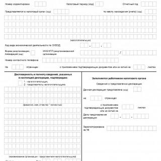 Декларация по УСН за 2015 - 2019 годы