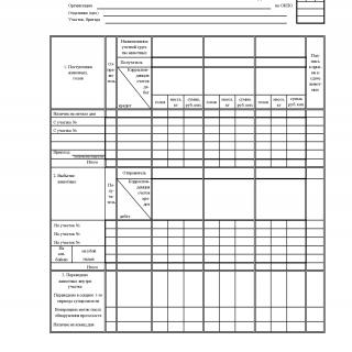 Форма СП-48. Учетный лист движения животных и расхода кормов