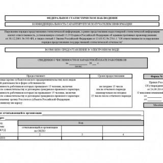 Форма П-4. Сведения о численности, заработной плате и движении работников