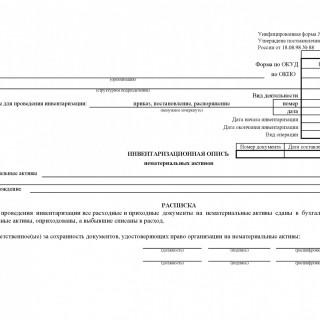 Инвентаризационная опись нематериальных активов. Форма ИНВ-1а