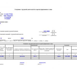Образец заполнения Форма СЗВ-ТД 2020 год