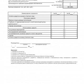 Отчет о целевом использовании полученных средств - Форма 6. С 2015 года