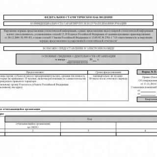 Форма П-5(м). Основные сведения о деятельности организации