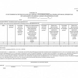 Справка о состоянии расчетов по налогам КНД 1160080