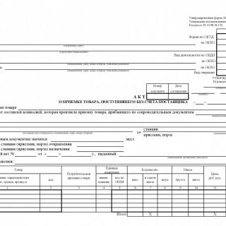 Акт о приемке товара, поступившего без счета поставщика. Форма ТОРГ-4